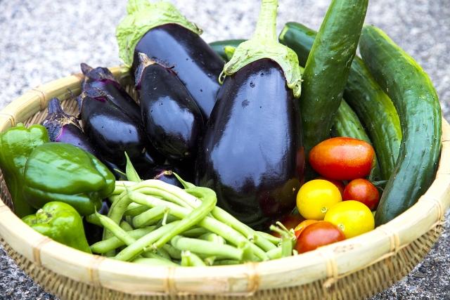 夏が旬の野菜や果物の特徴
