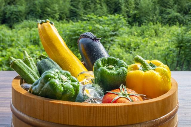 夏に旬を迎える美味しい野菜6選!選び方のポイントも紹介